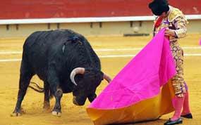 Morante en una excelente verónica hoy en Castellón. (FOTO: Antonio Casado-burladero.com)