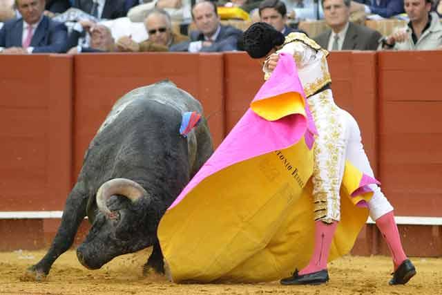 Por el lado izquierdo se desplaza mejor el astado de Victorino Martín.