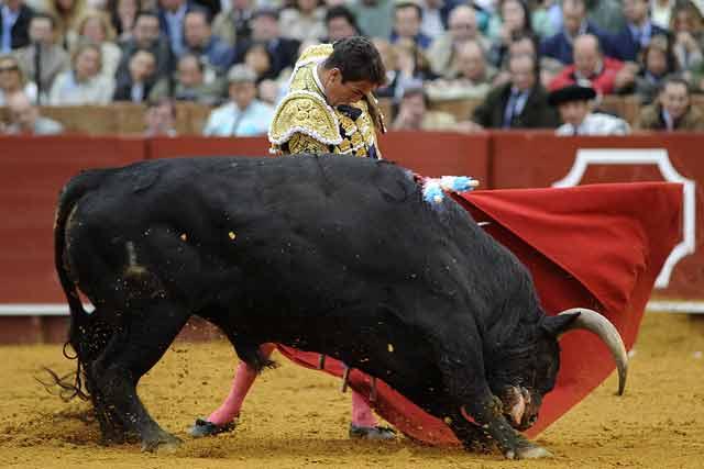 Conjunción perfecta toro-torero.