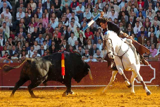 Ganándole el terreno al toro para clavar.
