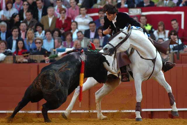 Espectacular momento de toro y caballo.