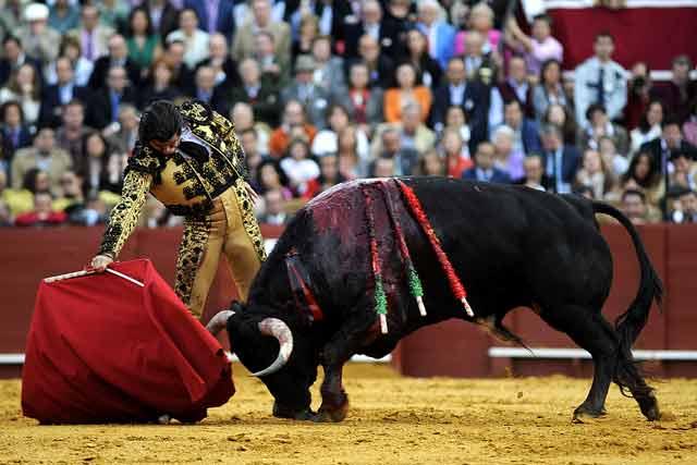 Morante, el artista del toreo sevillano.