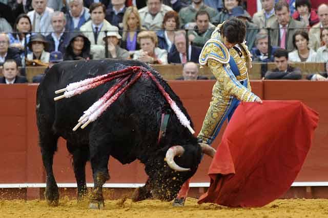 El toro totalmente embarcado mediado el pase de pecho.