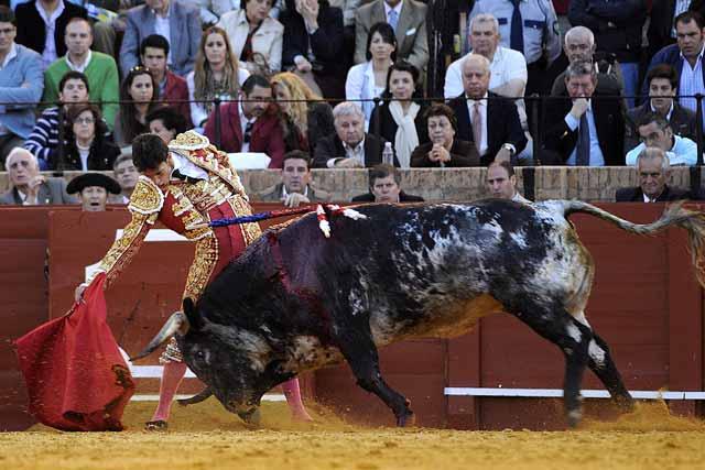 Toro y torero no se entendieron bien hoy en la plaza.