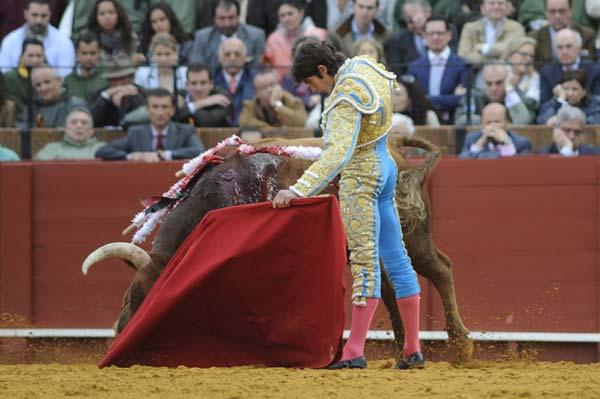 El quinto, otro toro que ha arrastrado el hocico por el albero. Castella en acción. (FOTO: Matito)