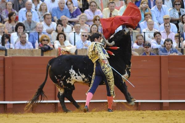 El toro  no deja rematar a El Fandi el pase de pecho. (FOTO: Matito)