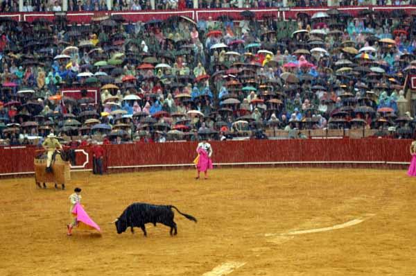 Arrecia la lluvia en la Maestranza y desluce el espectáculo. (FOTO: Javier Martínez)