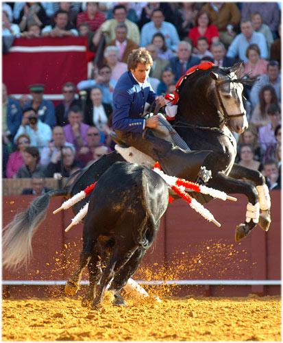 Espectacular detalle de Hermoso de Mendoza. (FOTO: Matito)