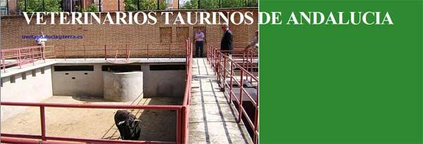 Portada del blog en Internet de los veterinarios taurinos andaluces.