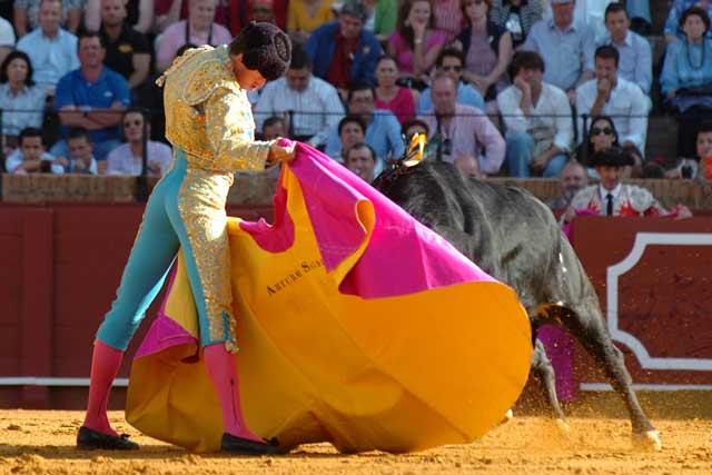 Arturo Saldívar se estira con gusto con el capote. (FOTO: Matito)