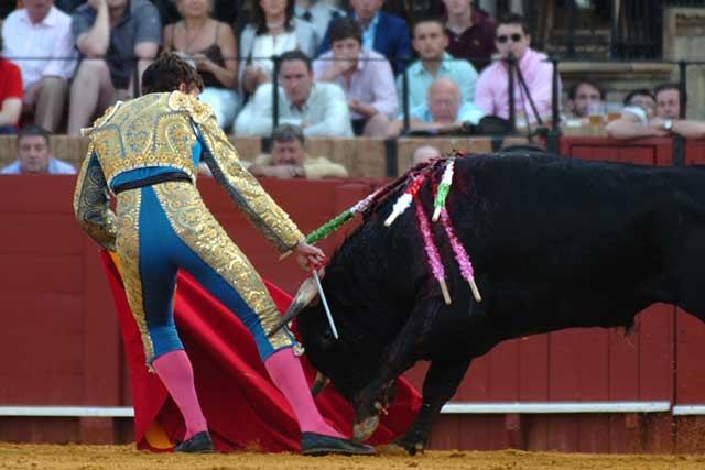 El sevillano Manuel Fernández fue volteado por esl segundo de la tarde. (FOTO: Matito)
