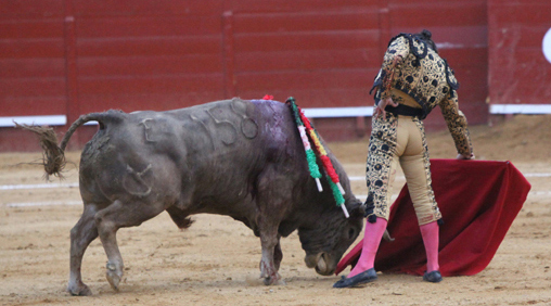 Morante toreando al buen toro de Cuvillo esta tarde en Jerez. (FOTO: desdelcalleon.com)