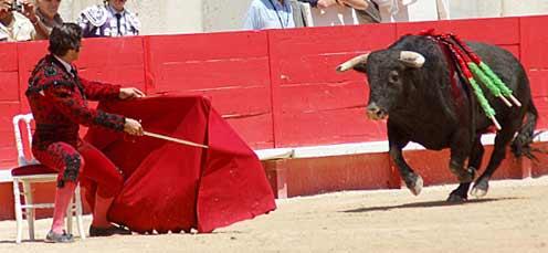Morante citando al toro sentado en una silla. (FOTO: Golfredo Rojas / burladero.com)