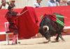 Morante inicia su histórica faena de Nimes sentado en una silla. (FOTO: Golfredo Rojas / burladero.com)