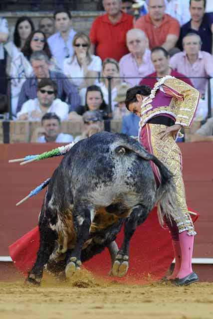 Uceda Leal en un derechazo ajustado. (FOTO: Sevilla Taurina)