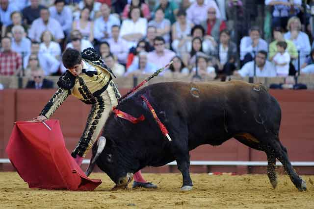 Larguísimo derechazo de José Arévalo. (FOTO: Sevilla Taurina)