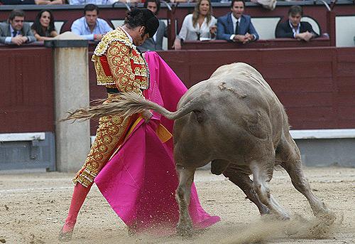 FOTO: Cabrera / burladero.com