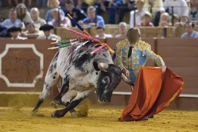 Fernández Ramos. (FOTO: Sevilla Taurina)