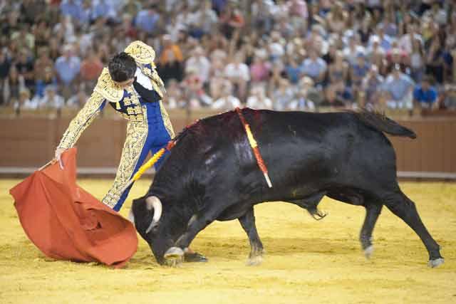 Iván Menacho. (FOTO: Sevilla Taurina)