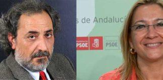 José Chamizo está investigando actualmente hasta tres quejas formuladas contra las actuaciones taurinas de la delegada de la Junta de Andalucía en Sevilla, Carmen Tovar.