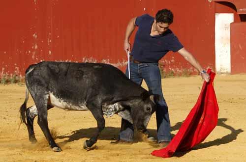 Alexander Fiske embarca con la izquierda a una vaca de Miura. (FOTO: Pepe Sánchez / Toros para todos-Canal Sur)