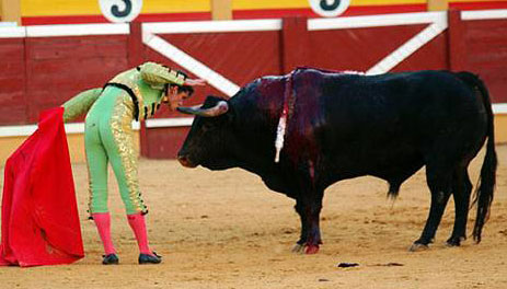 Daniel Luque muerde el pitón del toro ayer en Tudela. (FOTO: José Luis Mena / burladero.com)
