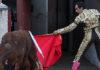 El Cid conduce al toro de Marca indultado hacia los toriles. (FOTO: Iván de Andrés / burladero.com)