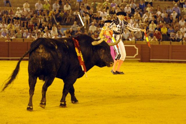 Cuando arranca la carrera Mariscal, el astado se distrae hacia la barrera. (FOTO: Sevilla Taurina)
