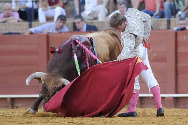 Nuno Casquinha. (FOTO: Sevilla Taurina)