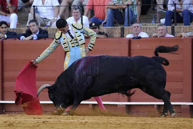 Martín Núñez. (FOTO: Sevilla Taurina)
