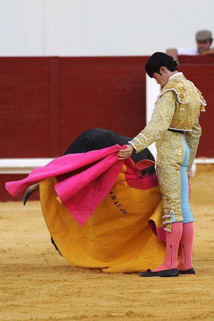 Daniel Araujo. (FOTO: Matito)