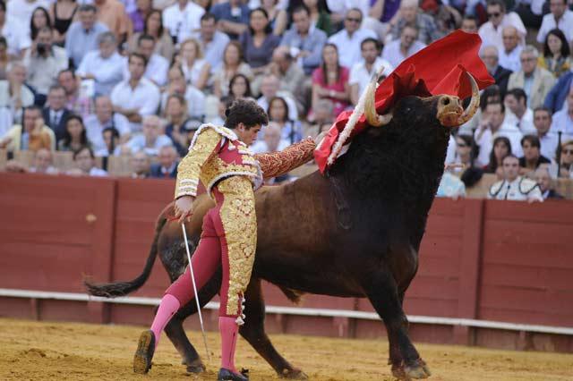 Daniel Luque. (FOTO: Sevilla Taurina)
