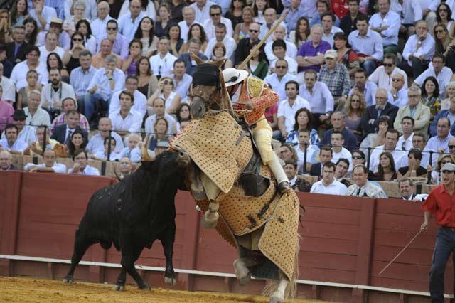 Toro de Alcurrucén. (FOTO: Sevilla Taurina)