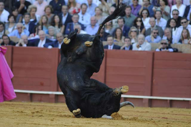 La Fiesta se hunde en la Maestranza. (FOTO: Sevilla Taurina)