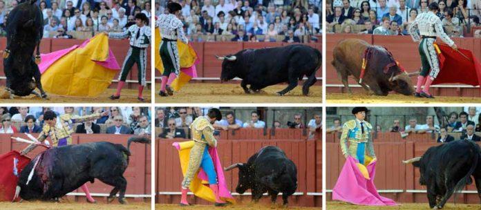 Los toros del 26 de septiembre, por los suelos. (FOTOS: Sevilla Taurina)