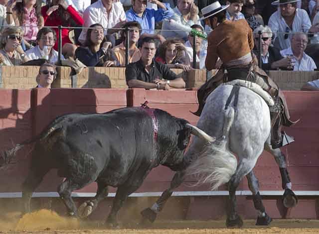 Diego Ventura. (FOTO: Paco Díaz / toroimagen.com)