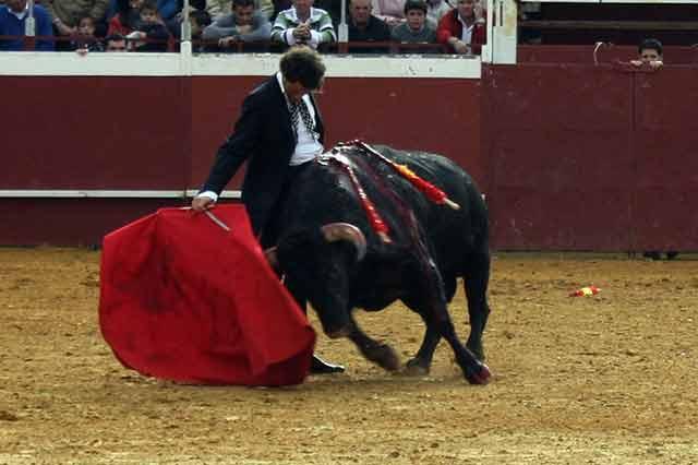 Finito de Córdoba, con el astado indultado. (FOTOS: Ruedos del Sur)