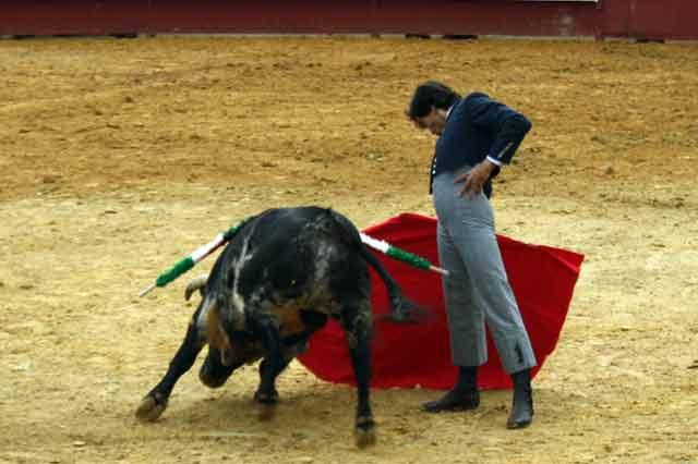 El torero linarense Curro Díaz con la derecha.