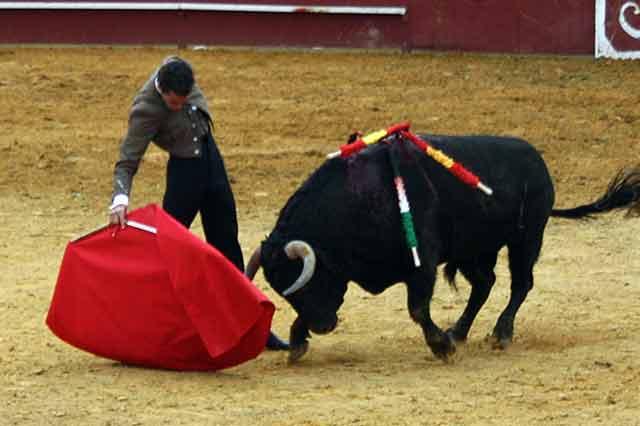 El torero local Pepe Moral triunfó en su pueblo.