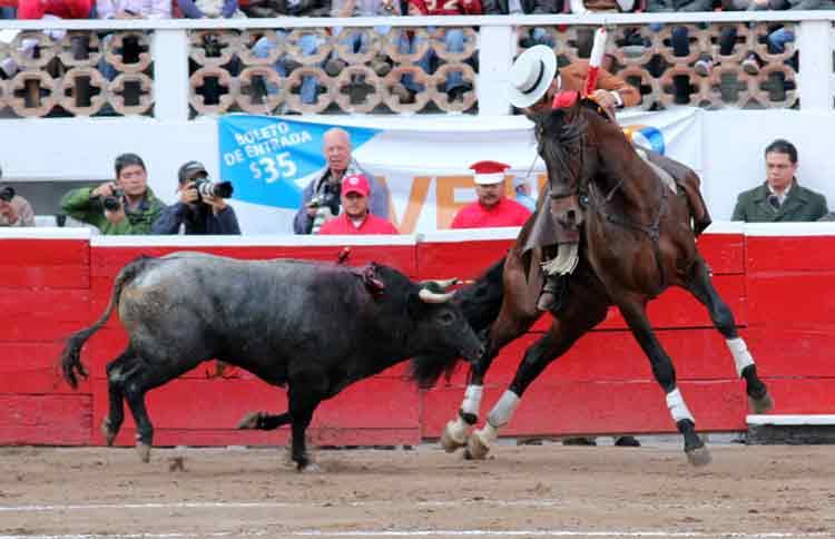 Ventura encela al toro en Querétaro.