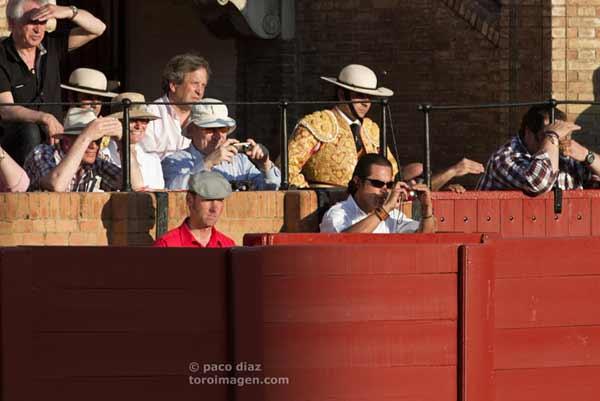 Los toros, desde la lejanía y molestado por el sol. (FOTO: Paco Díaz/toroimagen.com)