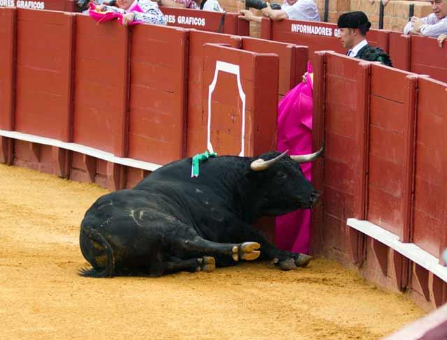 Con peligro de derrumbe. (FOTO: Paco Díaz/toroimagen.com)
