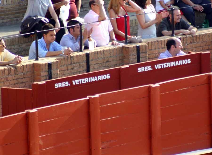 Y el burladero de veterinarios, pues también con todo el espacio sobrante; ¿o será cosa del partido del Sevilla...?. (FOTO: Javier Martínez)