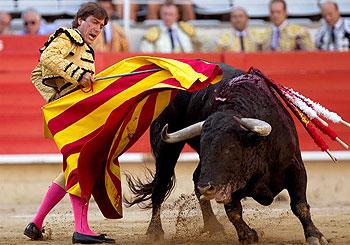 El sevillano Antonio Barrera toreando con una senyera catalana como muleta. (FOTO: Efe)