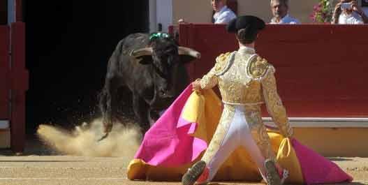 Esaú Fernández ha recibido a portagayola a su primero en Bayona. (FOTO: Maurice Berho/mundotoro.com)
