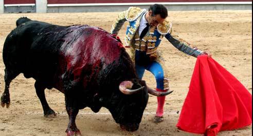 Uno de los buenos muletazos de El Cid al destacado toro de Puerto de San Lorenzo esta tarde en Madrid. (FOTO: mundotoro.com)