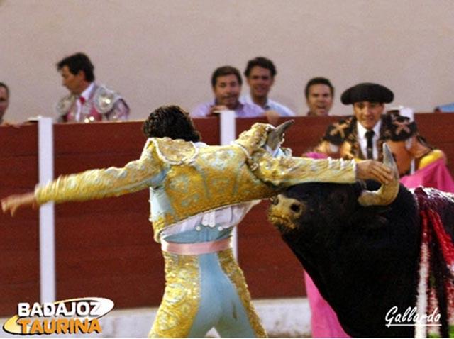 El toro de Ruchena zarandea a Oliva Soto. (FOTO: Gallardo - badajoztaurina.com)