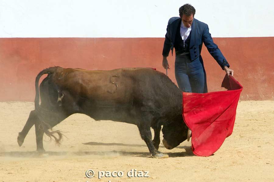 Salvador Cortés en su faena de muleta.