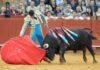 'Arrojado', de la ganadería de Núñez del Cuvillo, el toro histórico de la temporada. (FOTO: López-Matito)