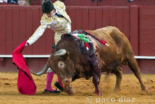 Gran juego de los toros de El Pilar en Feria.